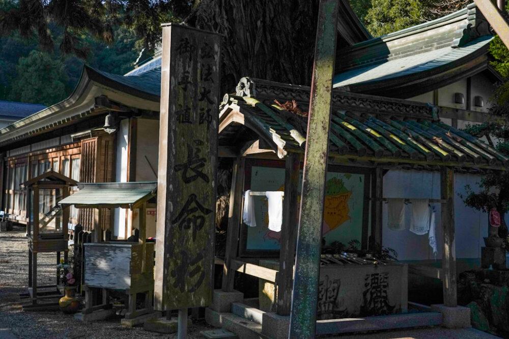 お遍路 第2番札所 極楽寺の長命杉