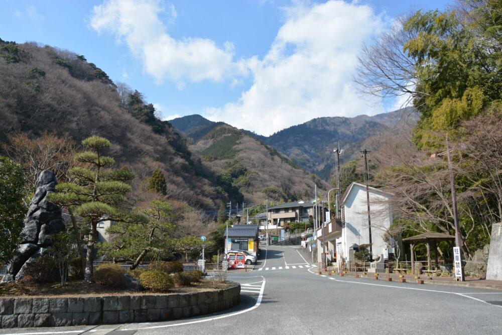 伊勢原大山のドライブコースの画像