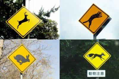 見たことある?意外な動物が登場するご当地「動物注意」標識27選