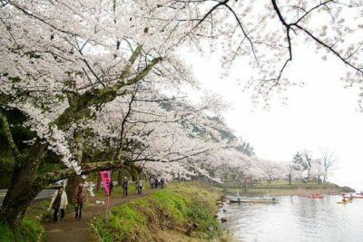 【滋賀】琵琶湖だけやない!ドライブデートにおすすめ絶景・夜景7選