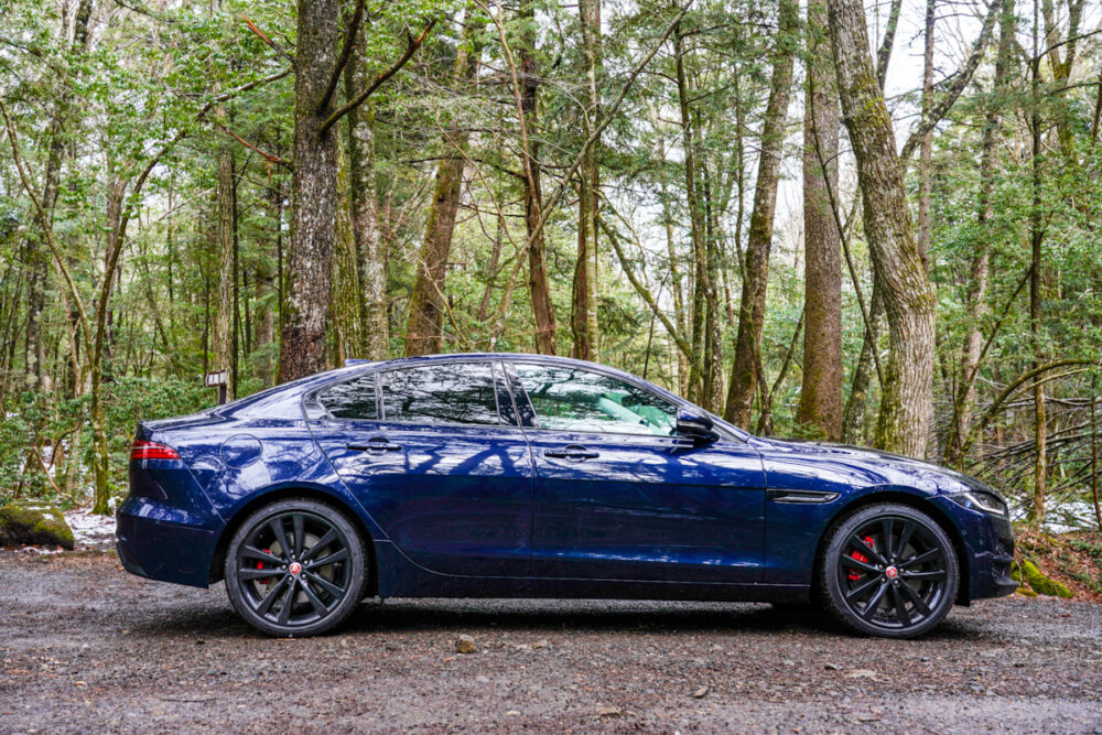 ジャガー XE 2020年モデル ボディサイド 林を背景に撮影