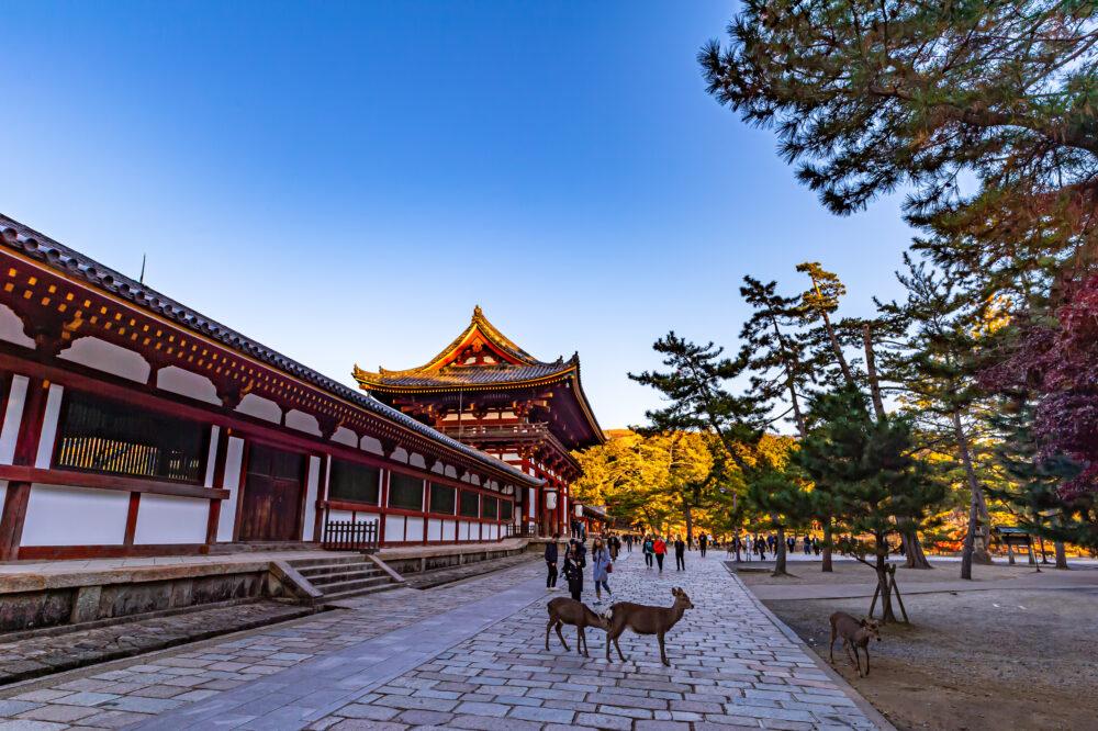 奈良東大寺の中門の夕景