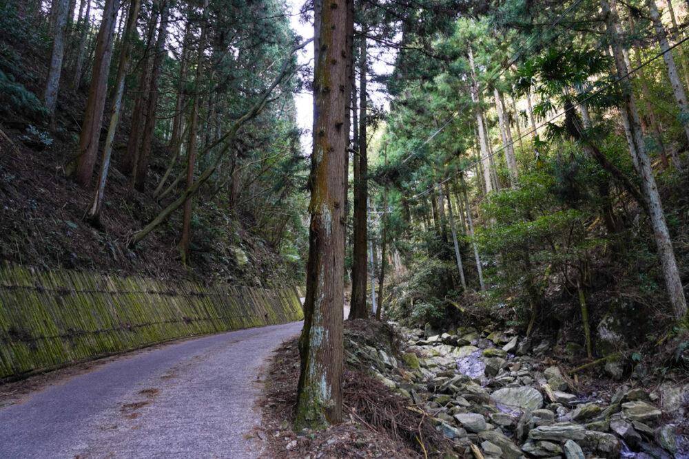 横峰寺へ通じる山道