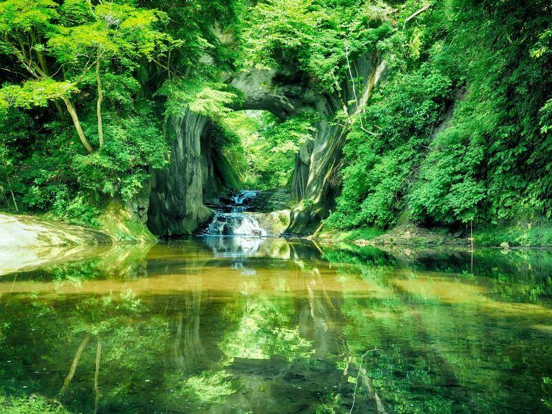緑が美しい風景