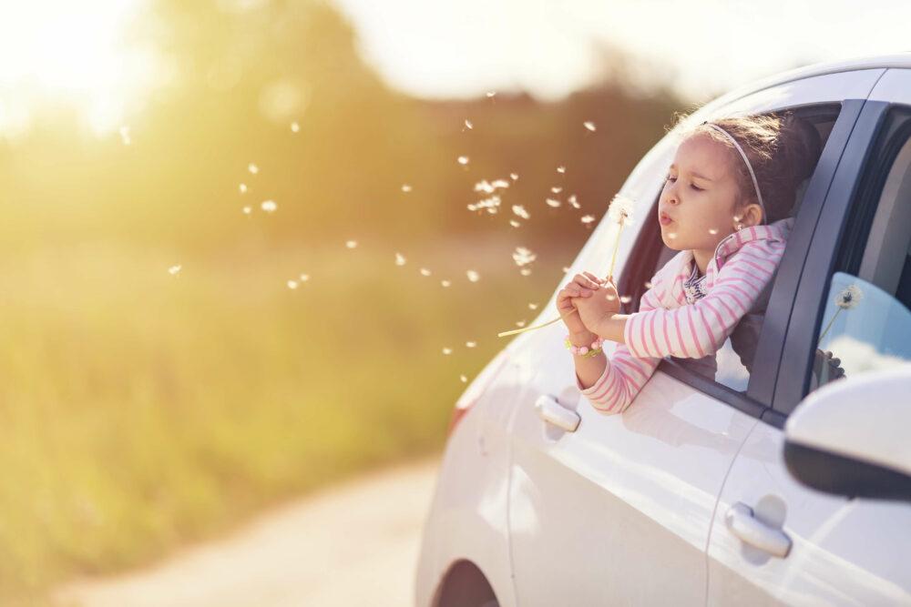 車の窓からタンポポの花を吹く女の子。